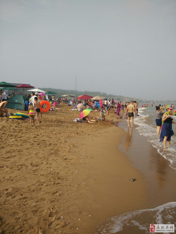 旅游酒店 >> 服务信息  夏天游玩好去处,就来兴城台里金沙湾浴场吧.