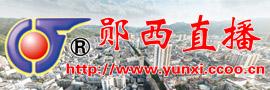 直播郧西活动,宣传七夕文化