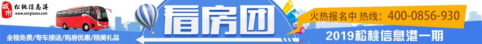2019年松桃信息港看房�F