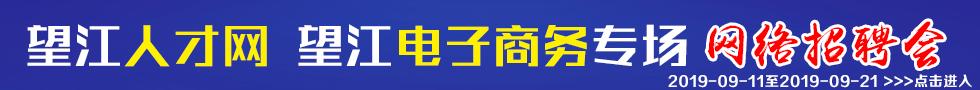 望江人才网电子商务专场大型网络招聘会