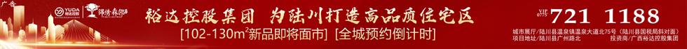 广西陆川裕达投资有限公司