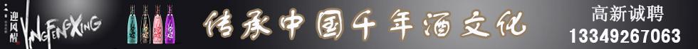桐城黄梅全成贸易有限公司