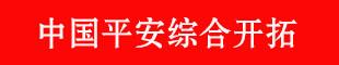 中国平安综合开拓