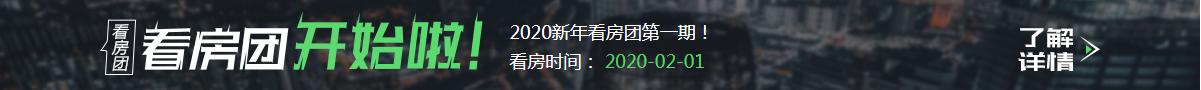 2020年看房团