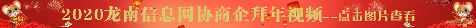 2020龙南信息网协商企拜年视频