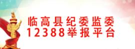 临高县纪委监委