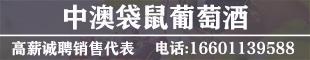 袋鼠國際貿易(北京)有限責任公司