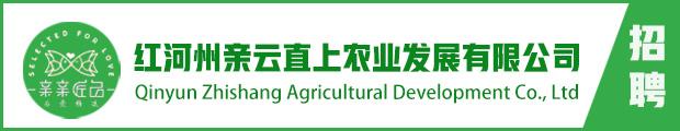 红河州亲云直上农业发展有限公司