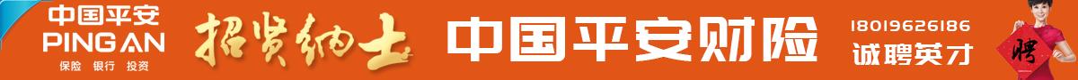 中國平安財產保險股份有限公司阜寧支公司