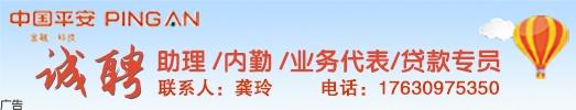 中國平安人壽有限公司