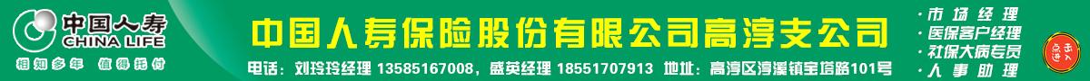 中国人寿高淳支公司