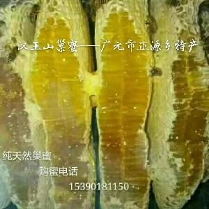 蜂舞汉王山