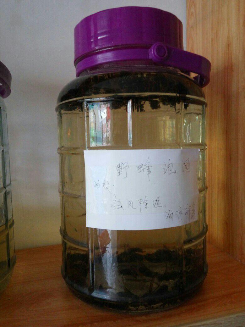 野蜂泡酒 治疗风湿 调节身体_健康养生_扎鲁特