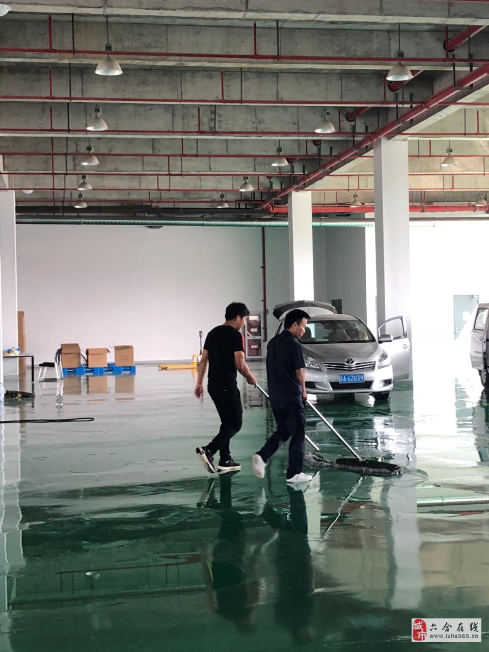 南京长健生物科技有限公司招聘