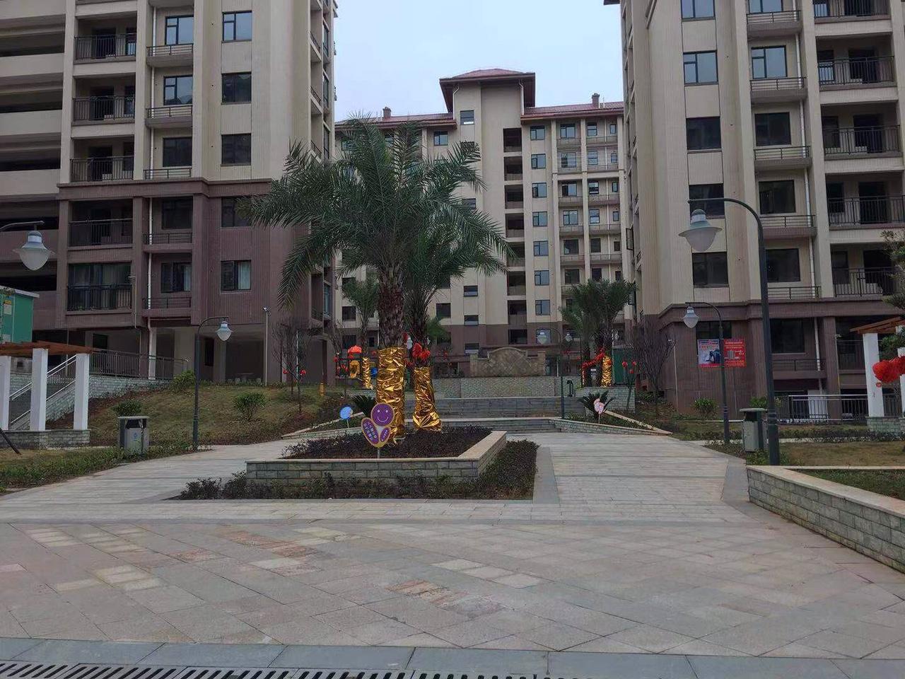 恒福紫园三房两厅正宗南北向,黄金楼层,上学近