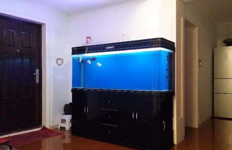 魚缸清洗,魚缸維護,服務第一