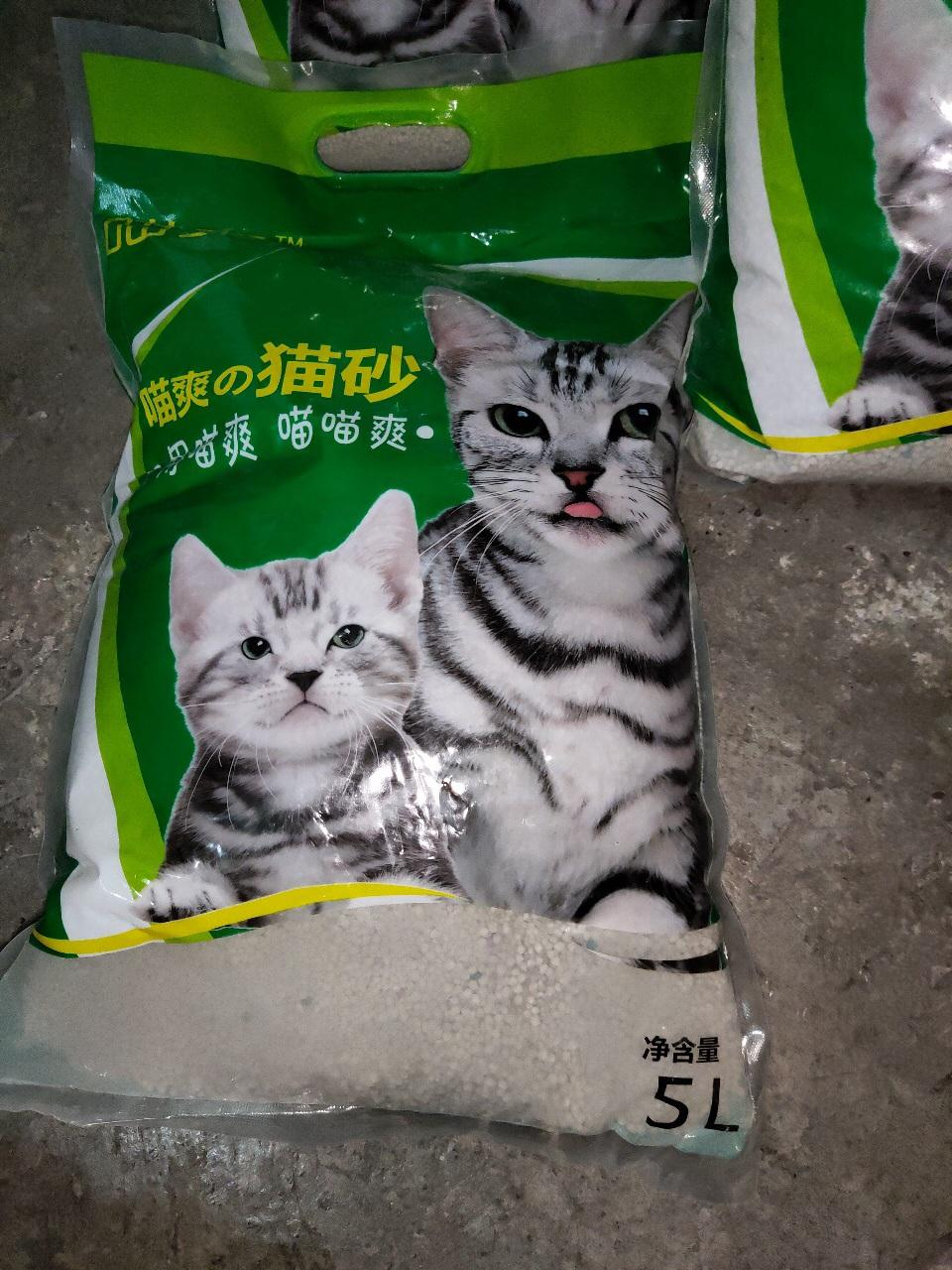 10元出猫砂