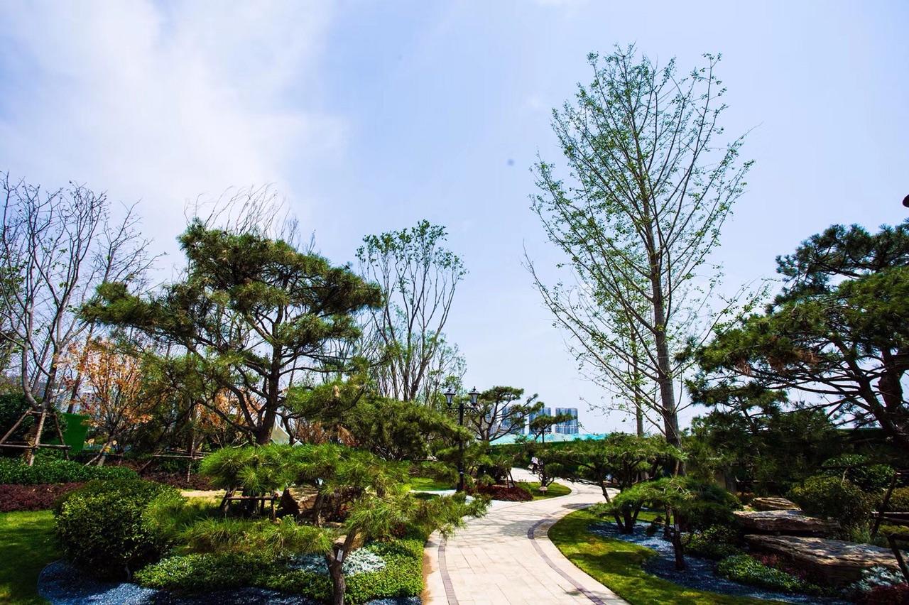 菏泽牡丹区恒大绿洲员工内部3室117平89万元