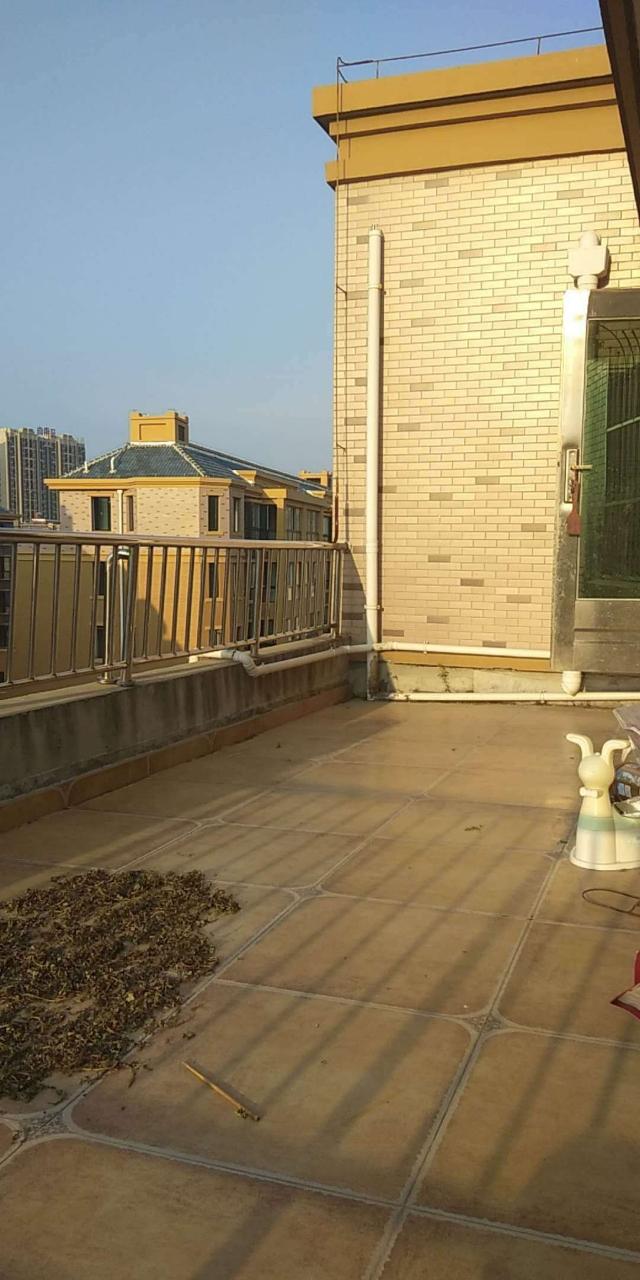 阳光花园  精装二室  南北通透 带平台 采光好
