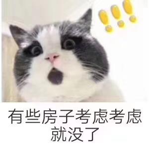 香江国际单价6200,标准2室捡趴了