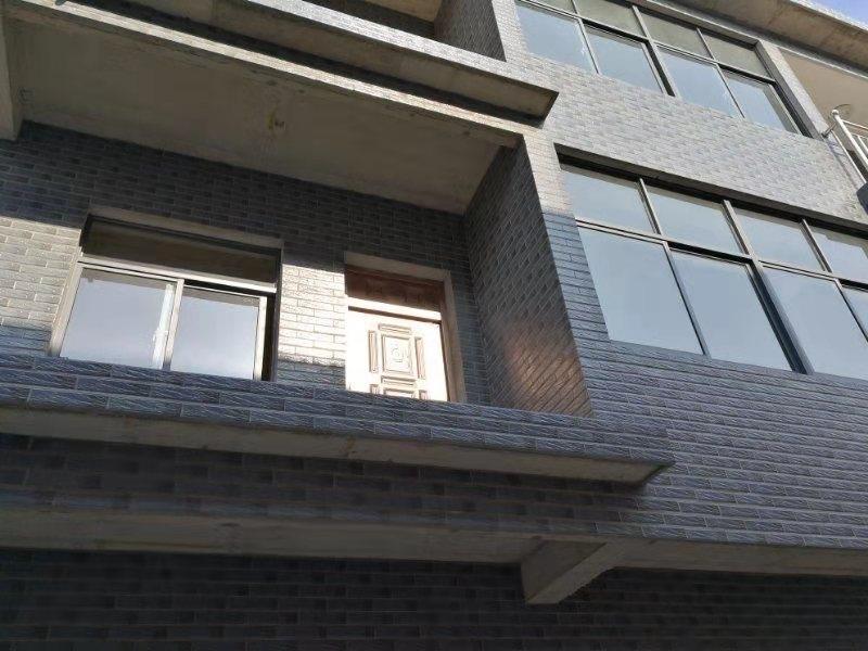 江宁区禄口街道里外城旁9室 4厅 4卫260万元