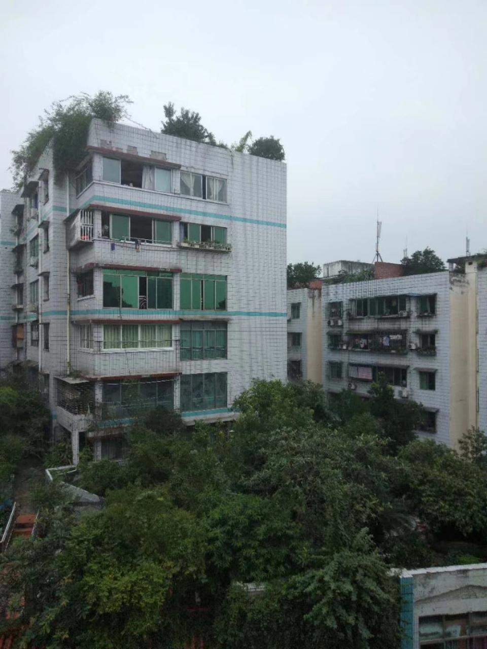 中医院4室 2厅 2卫48.8万元