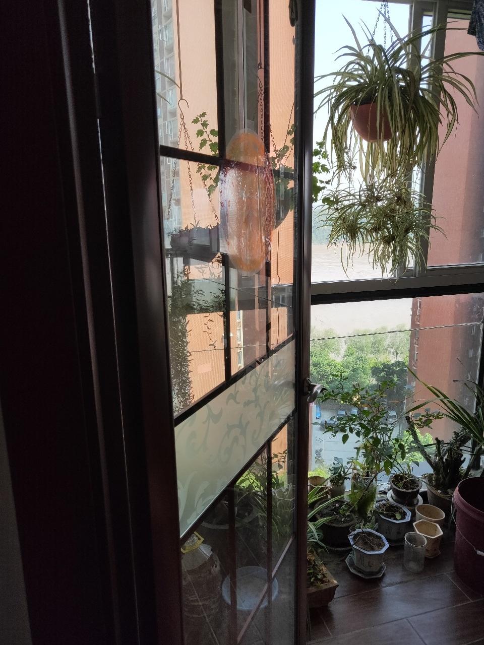 一线江景房,卧室客厅全望江,豪华装修,舒服的板