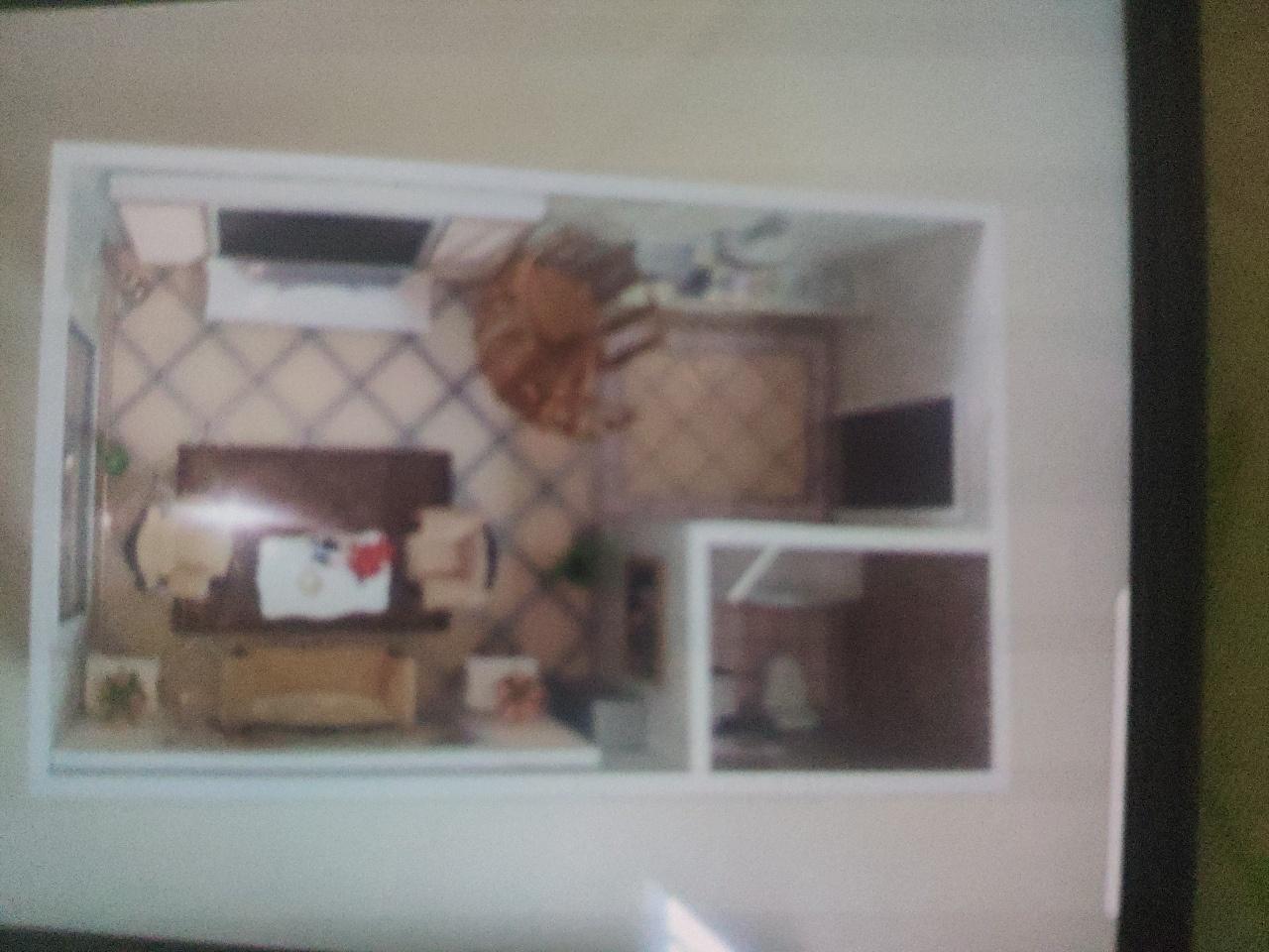 金领广场公寓2室 1厅 2卫20万元