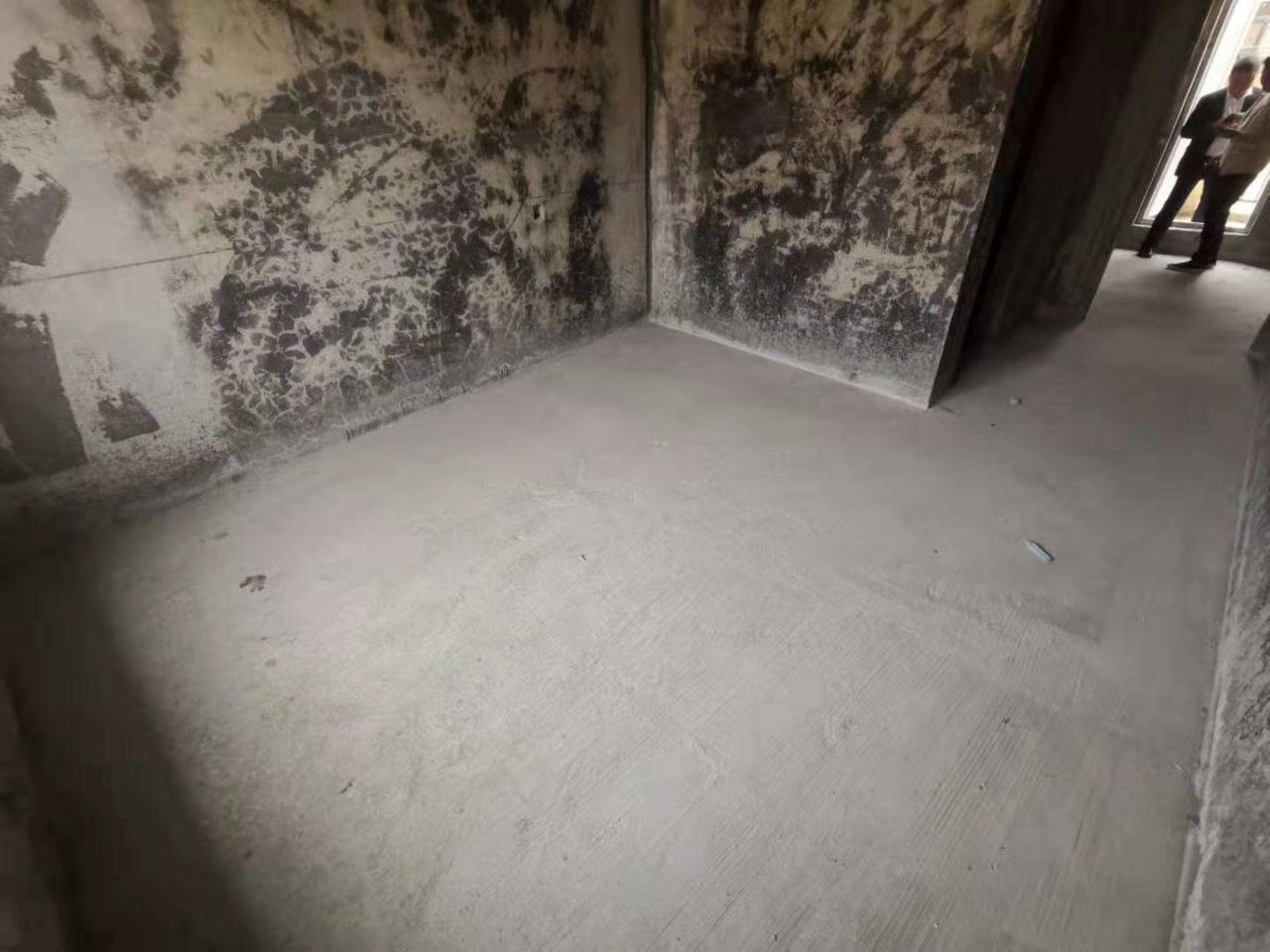 德信楼中楼洋房带电梯只需72.8万