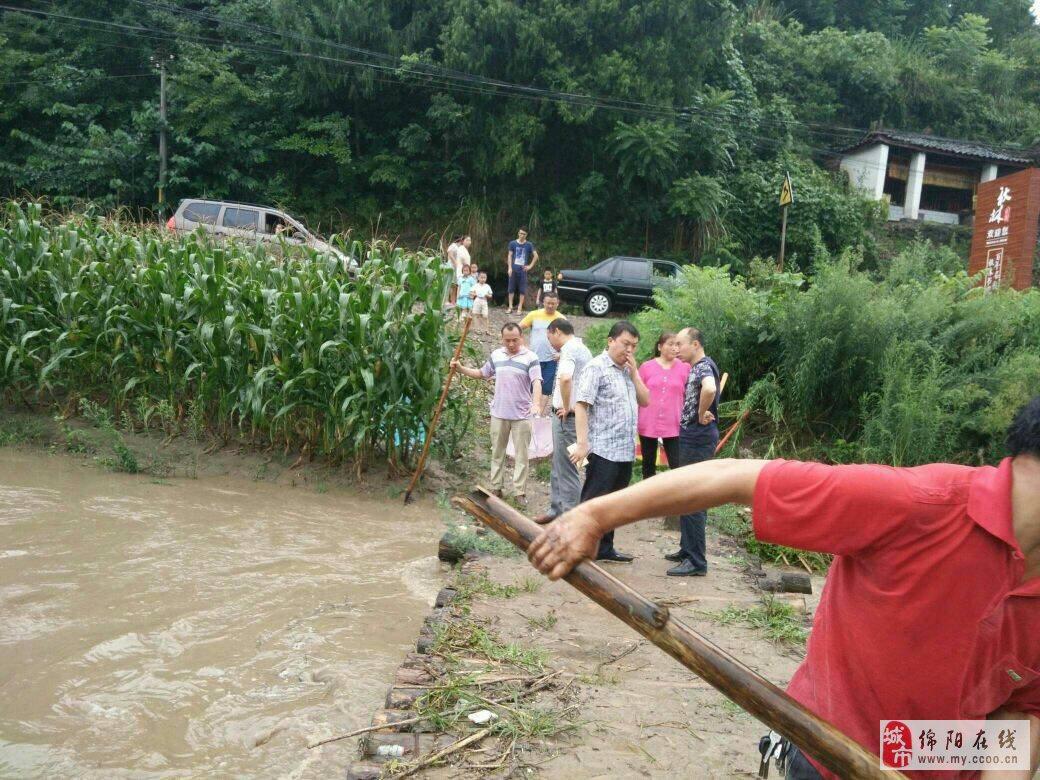 三台县秋林镇:干部到抗洪排险第一线图片