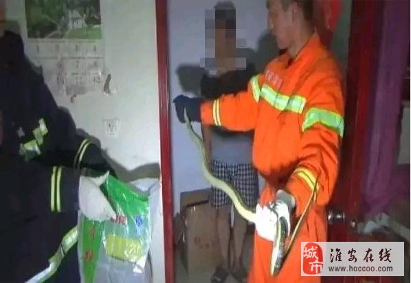 【惊险】淮安区东长街一两米长大蛇凌晨误闯民宅,太吓人了!