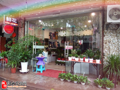 盆栽花店的装修