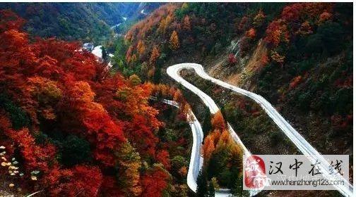 金秋,光雾山的红叶格外的美