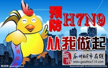 预防H7N9措施