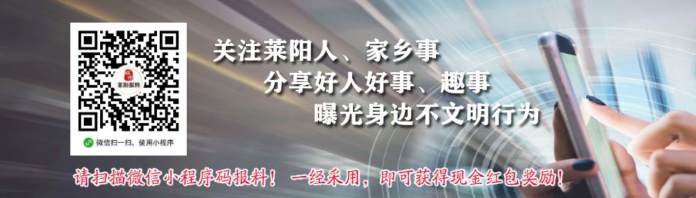 莱阳报料封面