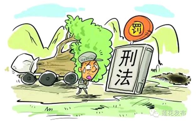 绿色盾牌~~守护莲花绿水青山