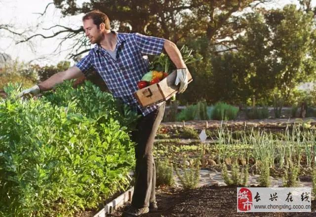 若你院意,冯唐图片的美食,房产你的v图片!,笔下就是蟾蜍院子图片