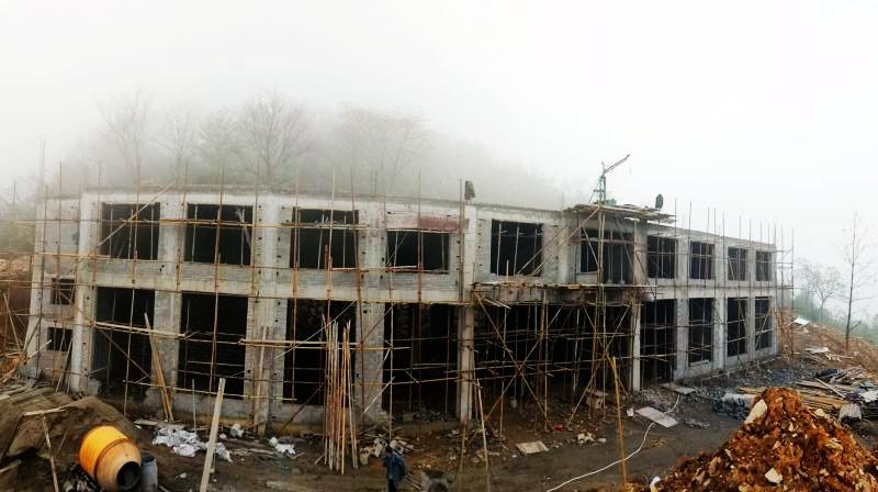 山顶的木屋别墅区了,整个别墅楼群落掩映在茶花海里