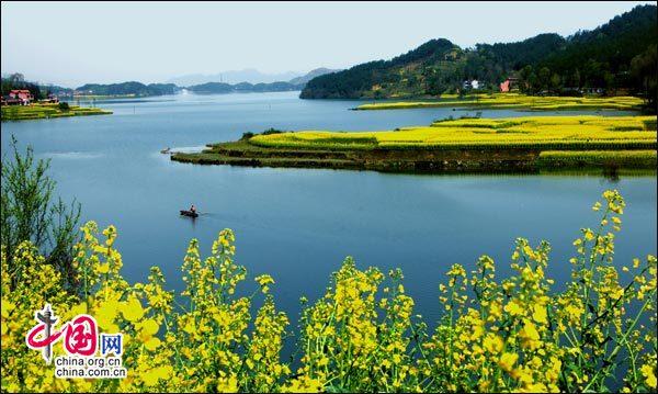 三月到汉中观赏油菜花海 尽享百万亩的浪漫