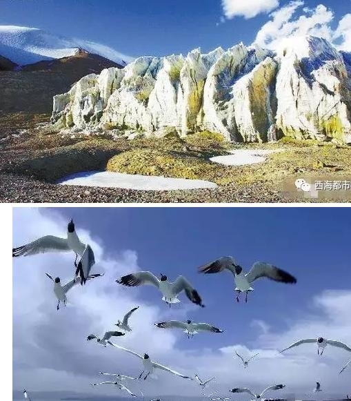 昆仑山国家地质公园 位于青海省海西蒙古族藏族自治州格尔木市.