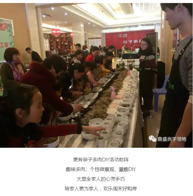 鼎盛尚学领地:【赞】周末新品火爆认筹,最萌多肉温馨助阵!