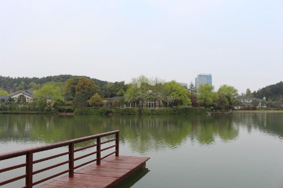 马云苏州建的圆林风景