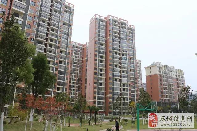 麻城新城区规划图