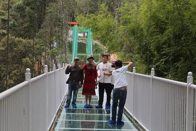 """听说桂山的玻璃吊桥开放使用,就和家人一起来体验了,""""虽然桂山玻璃桥"""
