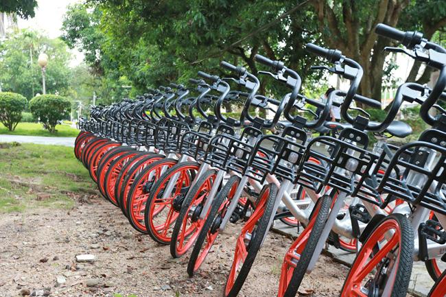 """共享单车正式""""安家""""儋州:设13个取车点,30分钟收费1元"""