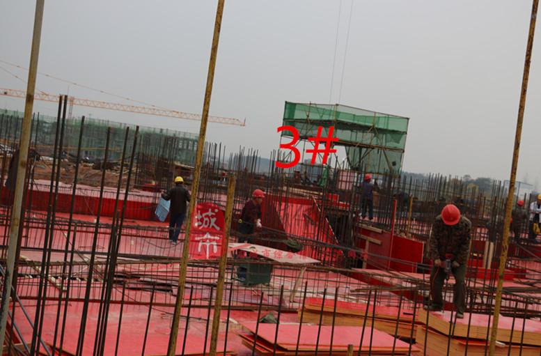 龙台别墅11报告新闻月份-最新楼盘可研|鹿角资工程重庆巴南别墅项目投资进度动态