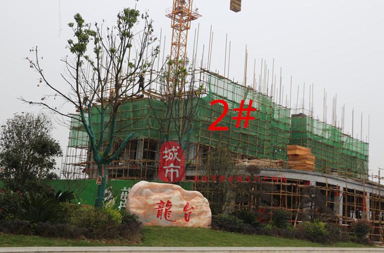 别墅工程龙台要闻11别墅楼市月份,房产资讯,房四环北京进度小图片