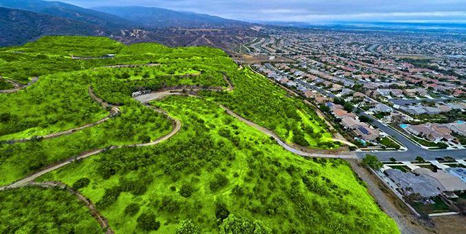 是全球最大的城市森林公园,涉及成都高新区,天府新区,龙泉驿区,青白江图片