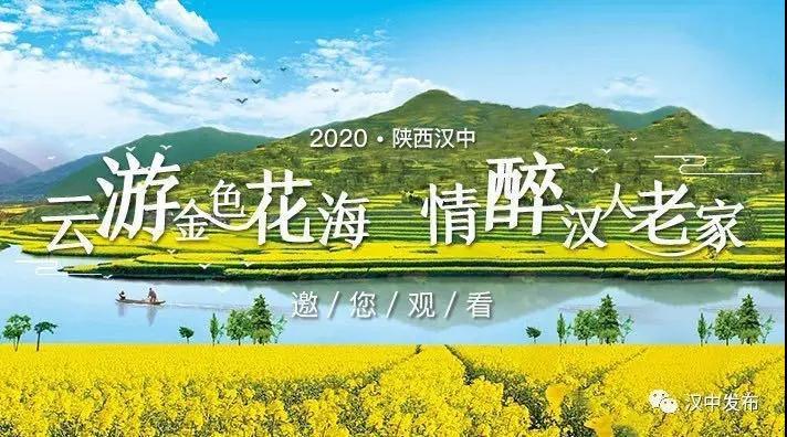 """2020陕西汉中""""云游金色花海、情醉汉人老家"""""""
