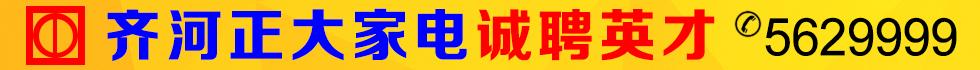 齐河正大家电销售服务有限公司